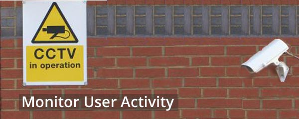 How to Monitor User Activity in WordPress