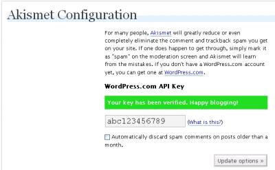 Akismet Key Verified
