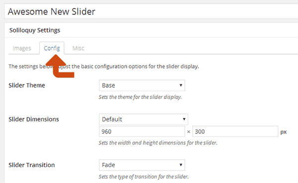 Configure advanced options for the slider