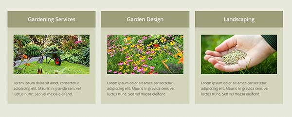 Display your gardening services on homepage